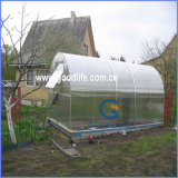 Clear X Structure Polycarbonate Hollow Sheet for Agriculture Greenhouses