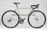 4130 Chromoly Road Bicycle