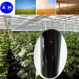China Liquid Amino Acid Fertilizer