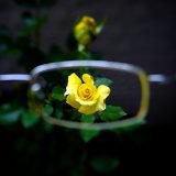 1.74 High Index Finished Single Vision Lens