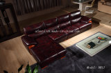 Hot Sale European Style Living Room/Home Furniture Sectional Leather Sofan811)