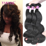 Top Quality 100% Unprocessed Hair Weave Brazilian Virgin Hair