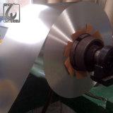 Prime SPCC/Mr Grade Tin Plate Coil
