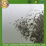 0.8mm/Wear Resistant National Standard Stainless Steel Pill 304 Material