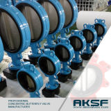 Cast Iron Gg25 Concentric Rubber Seated Butterfly Valve