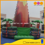 Inflatable Clibming Sports (AQ1919)