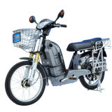 Electric Bike/Bicycle (TDL909KZ)