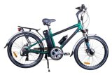 Mountain Electric Bikes (TDE03Z)
