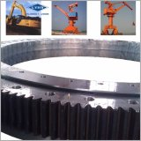 Slewing Ring Bearings for Crane