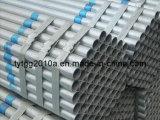 Galvanized Pipe (TYT2009301658)