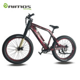 AMS-Tde-Sr Top Quality 1000W Fat Tire Electric Bike