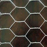 Hexagonal Wire Mesh (LY)