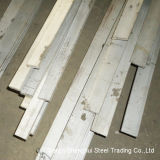 Professional Manufacturer of Stainless Steel Flat Bar (430)