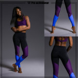 Best Quality Girls Wearing Yoga Pants Contrast Waistband