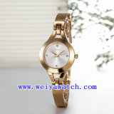 Promotion Watch Alloy Casual Wrist Watches (WY-021F)