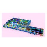 Cheer Amusement Indoor Soft Play Playground Equipment (ZJ-XL-10)