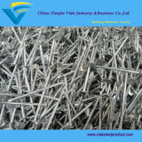 "Big Head Galvanized Roofing Nails 1 1/4""X11g Cupper Nail or Clout Nails with Best Quality and Directly Factory"