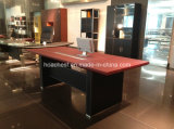 Modern Leather MDF Office Table (AT025)