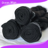 Spring Fumi Curl 100% Malaysian Virgin Remy Hair Extension/Weft