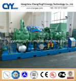 CNG24 Skid-Mounted Lcng CNG LNG Combination Filling Station