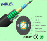 GYXTW 4b1 6b1 8b1 10b1 12b1 24b1 Outdoor Fiber Cable (Armored and Sheathed Central Loose Tube)