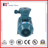 Electric Induction Motor with Aluminum Casing Housing (YX3 Series)