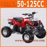 China 50cc - 110cc Automatic Quad Bike for Kids