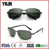 Hot Sale Custom Logo Mans UV400 Protective Sun Glasses (YJ-F8295)