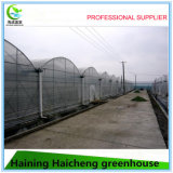 Hot Galvanized Steel Green House Frame for Sales