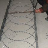 Galvanized Razor Barbed Wire (ISO 9001 BTO-22)