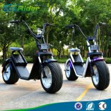 Popular Harley Style Electric Scooter with 2 Seater Citycoco Scooter