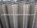 Best Price Hot Dipped 2X2 Galvanized Welded Wire Mesh