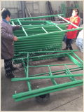 Painting Green Heavy Duty Shoring Type Scaffolding Ladders