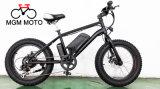 20′ Fat Tire Big Power Hot Sale E Bike