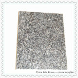 Black Stone Granite Tile (South Africa black)
