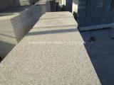 New G603 Grey White Granite for Floor Tile or Paving Stone