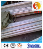 ASTM 304 Seamless Stainless Steel Tube/Pipe
