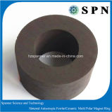 High Quality Strong Ferrite Magnet Ring for Motor