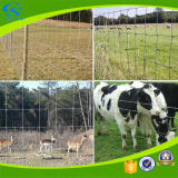 Fixed Knotted Steel Wire Cattle Fence Grassland