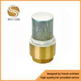 Water Pump Brass Spring Check Valve