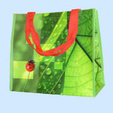 Promotional Full Color Laminated PP Woven Bag