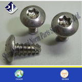 Made in China Steel T20 Torx Screw