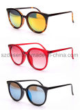 Wholesale New Fashionable Custom PC Women Sunglasses