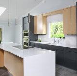 North America Modern Veneer Kitchen Cabinet