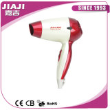 Cold and Hot Air Hair Dryer Rcy2818