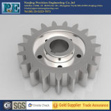 Customized High Precision Steel Gear