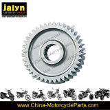 Motorcycle Parts Motorcycle Cam Gear for Gy6-150