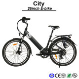 Samsung Electric Bicycle Panasonic E-Bicycle Side Pull Battery Electric Bicycle (TDF05Z)