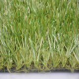Popular Sports Artificial Football Field Grass (ST)