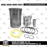 Diesel Engine Spare Parts (CYL. LINER PISTON RING PIN KIT) (S195)